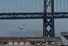 Fleet Week 10-2017 (daver6sf@yahoo.com) Tags: blueangels jets baybridge portofsanfrancisco