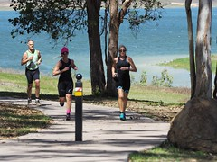 "The Avanti Plus Long and Short Course Duathlon-Lake Tinaroo • <a style=""font-size:0.8em;"" href=""http://www.flickr.com/photos/146187037@N03/36894413693/"" target=""_blank"">View on Flickr</a>"