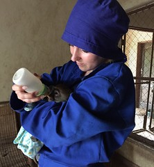 "Orphan care • <a style=""font-size:0.8em;"" href=""http://www.flickr.com/photos/152934089@N02/36904350154/"" target=""_blank"">View on Flickr</a>"