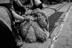 The daily market includes local farmers bringing their skinned sheep to town to sell the fur.