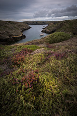 Natural shelter (ELX_Images) Tags: lines landscape elxphotography nature water plants green outdoor bretagne recreation holiday light peaceful trees wildflower belleileenmer serenity flower sailingboat perspective hiking afternoon sky seascape france sea colors clouds