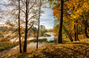 A Glowing October Morning (Sergey Surovy) Tags: 2017 belarus minsk autumn landscape morning water nature nikond7100 sigma1020