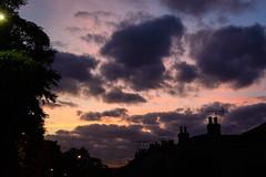 Street Sunset (285/365, October 12th)