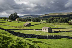 Wensleydale (Keartona) Tags: barn stonewall rural countryside landscape green beautiful northyorkshire wensleydale dale agriculture view scenery england english september sunny cloudysky weather contrast
