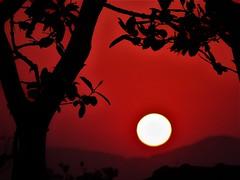 Final de tarde (salezio wagner) Tags: sol vermelho final