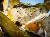 Putgarten 18.jpg (vossemer) Tags: texturen rost abstraktes rügen inseln orte bildart putgarten mecklenburgvorpommern deutschland de