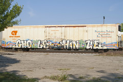 Ghouls Hindue (Psychedelic Wardad) Tags: freight graffiti gtb hindue1 hindue weedheads wh dirty30 d30 sws a2m ghouls