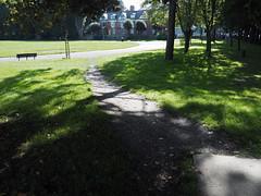 desire path 102 (chrisinplymouth) Tags: urban park path desirepath plymouth devon england uk cw69x 2017 plymgrp city
