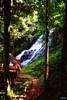 Entre árboles (Berly Fuster [Theretsuf]) Tags: selva cascada agua árbol árboles flora hojas piedra madera choza ramas