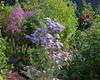 2017 Germany // Unser Garten - Our garden // im Oktober // (maerzbecher-Deutschland zu Fuss) Tags: 2017 garten natur deutschland germany maerzbecher garden unsergarten oktober