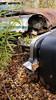 20171021_125209 v2 (collations) Tags: ontario mcleansautowreckers autowreckers wreckers automobiles autos abandoned rockwood derelict junkyards autograveyards carcemeteries