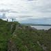 2017-08-26 09-09 Schottland 471 Cullen Bay