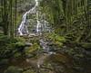 Nelson Falls (cih94) Tags: waterfall long exposure daylight green trees forest white water tasmania australia nelson falls