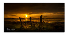 The Hunters Lair   [Explored] (RonnieLMills) Tags: hunters lair hide posts wire marshes flood gates newtownards early morning sunrise dawn explore explored 81017 20