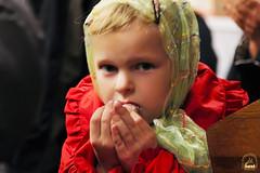 Преподобного Сергия (17)