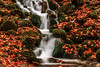 Where do you stand? (BeNowMeHere) Tags: ifttt 500px autumn color travel foliage waterfall trip flow colorful colourful nature landscape fall river colour turkey bolu yedigöller fallcolours benowmehere wheredoyoustand