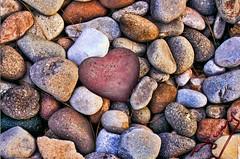 "Stone heart (ingcuevas) Tags: piedra corazon rocas natural heart stone colores colorful colors rock small texture beautiful love river riverstone pretty vibrant relief nikonflickraward"""