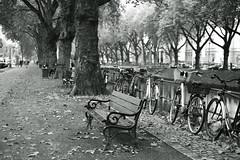lonely bench@Kö, Düsseldorf (Amselchen) Tags: bicycle trees canal water season autumn fall kö düsseldorf germany city cityscope bokeh blur dof depthoffield fujifilm fujifilmxseries fujinon xt2 fujifilmxt2 xf35mmf14r
