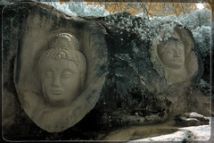 Siddhartha i el Guardià del Dharma (Ar@lee) Tags: rutadelascaras buendia cuenca airelibre bordeparafotos colours d50 espectrocompleto fullspectrum fotografíainfrarroja filtre680nm green ir nikond50 naturaleza photographyinfrared color