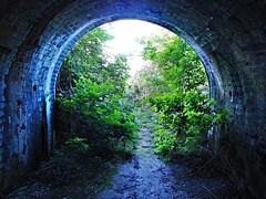 RIVER ANCHOLME NORTH OF BRIGG (tony.bullen58) Tags: bridge tunnel