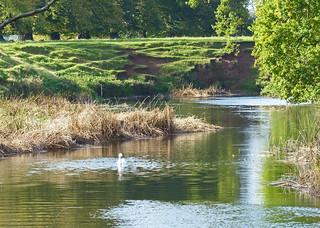 River Avon at Charlecote, Warwickshire