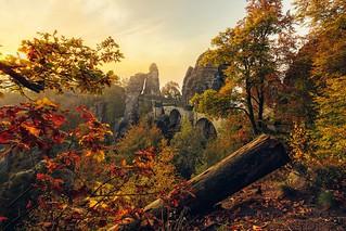 Saxony Autumn