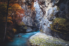 The Canyon (VandenBerge Photography (On/off ....but mostly off) Tags: nature nationalgeographic theaare theaaregorge autumn season canon eos80d river travel trees colours alps cantonberne canyon water