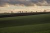 Plaine de France (Giloustrat) Tags: paysage ciel iledefrance plainedefrance k3pentax vert diagonal valdoise 500v50f fv10 jalalspagesnaturealbum