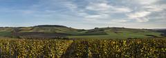 2017-panorama-St Bris 89 (dangui89) Tags: vignes raisins ciel nuages coteaux côtes auxerre france bourgogne yonne89 chablis stbrislevineux guillierdanielphotofr