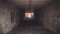 Tunnel To Freedom (S.Eschbach Photography) Tags: cloudedgreen deutschland germany rheinlandpfalz rhinelandpalatinate alley composition dusk photoshop sunset tunnel