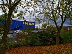 Der Herbs läst sich nicht mehr aufhalten (johannroehrle) Tags: herbst himmel hdr haus bayern baum blätter bäume regensburg oberpfalz outdoor jeseň jesień sony ikea xxxl lutz holz parkplatz