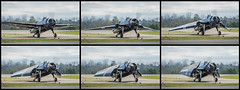 Avenger - Doris Mae - Wing Fold Demonstration (4myrrh1) Tags: culpeper 2017 aircraft airplane aviation airshow airplanes canon 7dii ef100400l ww2 wwii military navy avenger fold wings
