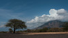 Baluran National Park (panoramadestination) Tags: java banyuwangi