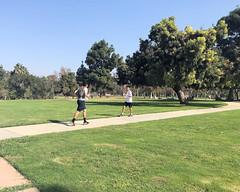 020 Runners Passing Each Other (saschmitz_earthlink_net) Tags: 2017 california longbeach eldorado orienteering laoc losangelesorienteeringclub losangeles losangelescounty eldoradoeastregionalpark park parks