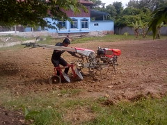 Attaching the plow to the tractor. (rodeochiangmai) Tags: plowing tractors farming menworking cambodia