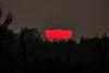 Sunset (betadecay2000) Tags: sunset sun sonne rood red rougue roughe rot sonnig abend abendstimmung herbst himmel sky german germany deutschland deutsch niemcy münsterland darfeld rosendahl rosendahldarfeld stern star horizont