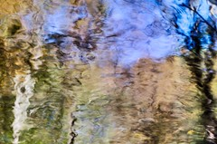 Woodland reflection (Pierre Jaquez - JPJ Photography) Tags: childspark delawarewatergap fall outdoor pennsylvania unitedstates abstract flickr nature print reflection