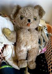 Raggedy Teddy (BKHagar *Kim*) Tags: bkhagar teddy bear teddybear sale estatesale shopping toy stuffedanimal
