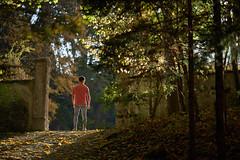 Patrick (Ernst_P.) Tags: ambras ambraserschlosspark amras aut innsbruck ãsterreich schlossparkambras tirol patrick calisthenics samyang walimex 135mm f20 österreich