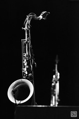Saxophone (D.Slaven) Tags: saxophone instrument jazz music festival concert subotica serbia jazzik2017 nikond7000 sigma70210 f3345