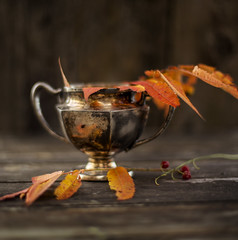 (donna leitch) Tags: autumn fall stilllife tabletop leaves silver vintage bowl 50mm
