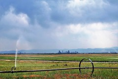 At the City's Edge (Patricia Henschen) Tags: rockymountainarsenal commercecity colorado nationalwildliferefuge urban denver skyline clouds mountains frontrange rocky irrigation equipment