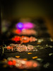 """Flickr Friday """"Orange Decoration"""" -- The spook is over (davYd&s4rah) Tags: halloween spook light skeleton sceleton scary autumn fall 1031 october31 2017 olympus m75mm f18 creepy bones bokeh confetti table"""
