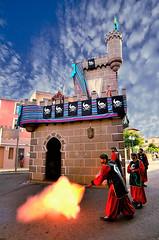 317-tro i castell