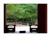 A chacun son jardin secret... / Séoul - Corée du Sud (PtiteArvine) Tags: jardin jardinsecret séoul coréedusud rêverie arbres vert automne solitude pensées