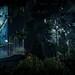 Prey / The Dark Forest