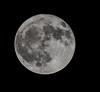 Full_Moon_10_05_17 012 (VinceFL) Tags: fullmoon100517 manfrottotripod moon nikonmll3 tamron70300mmf456dild12autofocusmacro vinceflnikond7100