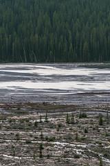 Glacial Plains (Mike_Y_Wong) Tags: canada alberta britishcolumbia banff jasper banffnationalpark jaspernationalpark nationalpark columbiaicefield icefieldsparkway glacier forest river pnw pacificnorthwest