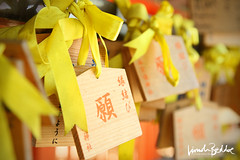 Temple Offerings, Kyoto (Lincoln Beddoe) Tags: offerings yellow temple offeringsjapantemple religion spirituality ribbons pattern