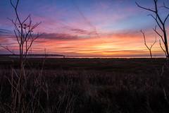 Thanet Skies (@bill_11) Tags: isleofthanet naturereserve sunrise pegwellbay places themes kent weather england cliffsend unitedkingdom gb